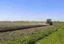 Agricoltura, manca manodopera e regolarità