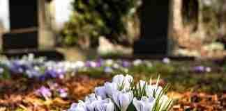 Fiori in un cimitero